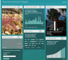 Your Life on Earth - Awesome Tool from BBC
